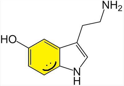 happyserotonin1