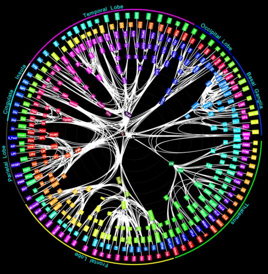 IBM-synapse-Circular-Brain-Scan.png