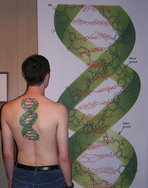 DNAback500.jpg