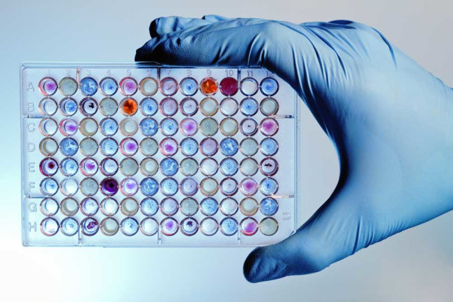 microplate drug discovery