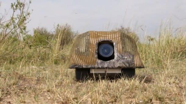 beetlecam1-610x342.jpg