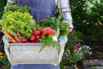 Want to Start a Vegetable Garden? Here's How, According to Science