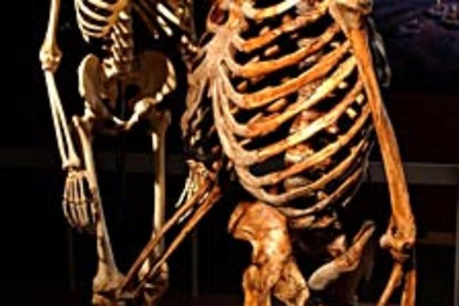 neanderthal225.jpg