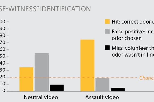 Nose-witness identification chart