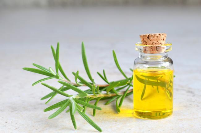Rosemary Essential Oil - Shutterstock