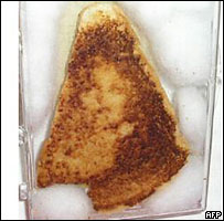 A grilled cheese bearing an image said to look like the Virgin Mary sold for $28,000 on eBay in 2004 (Credit: http://news.bbc.co.uk/2/hi/4034787.stm)