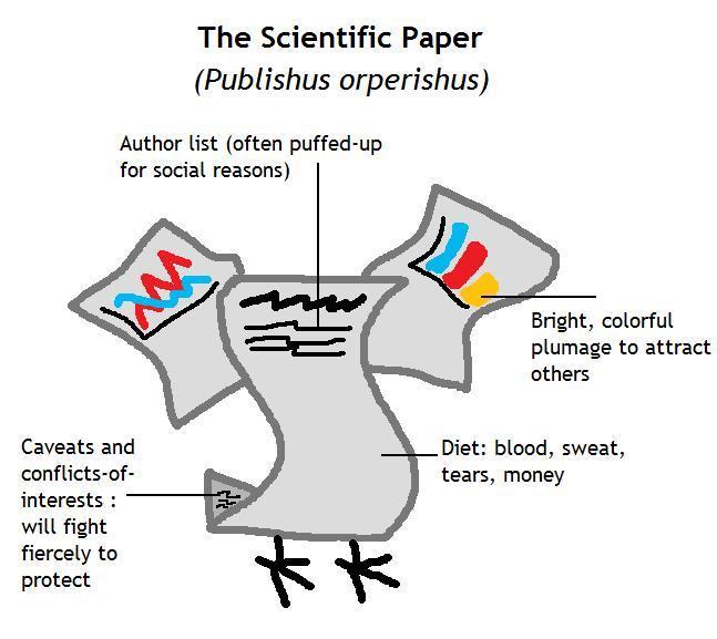 scientificpaper.jpg