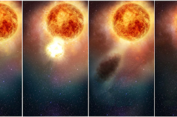 Betelgeuse: The Supernova That Wasn't