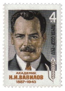 Vavilov1.jpg
