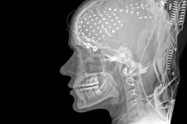 brainmedia.jpg