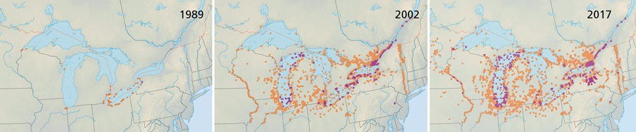 great-lakes-invasion