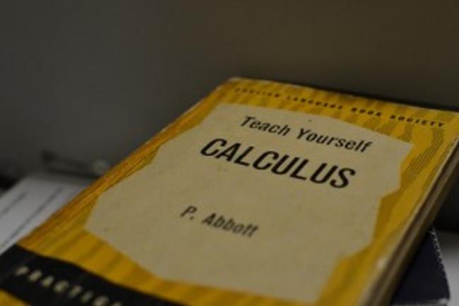 calculus-300x199.jpg