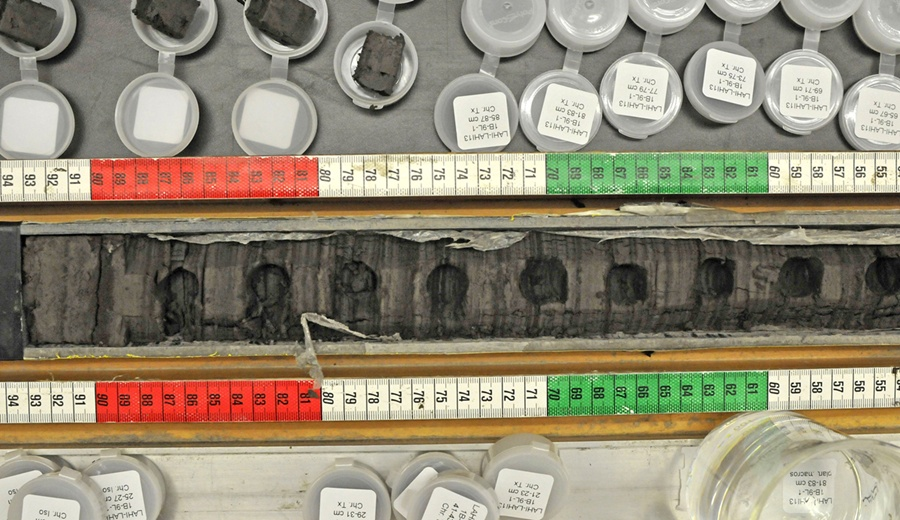 samples from the St. Paul Island sediment cores