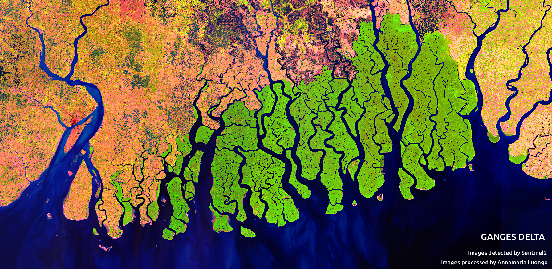 The Ganges Delta Seen From Space