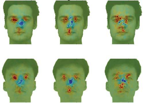 Faceprocessing.jpg