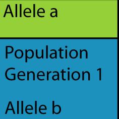 population1gen1gen.jpg