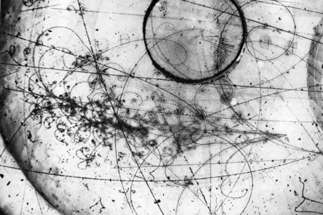 Neutrinos in bubble chamber - Fermilab
