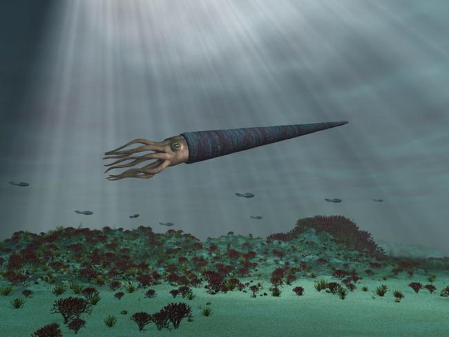 3D Illustration of a Cameroceras at sea - shutterstock