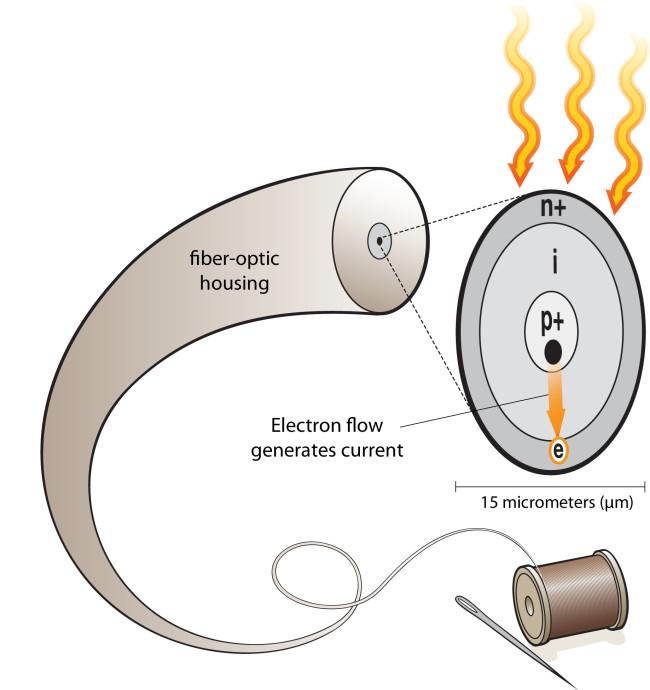 flexible-solar-cell.jpg