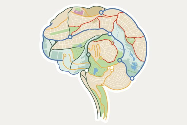 brain-map.jpg