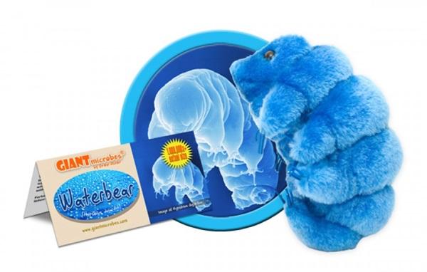 tardigradegifts