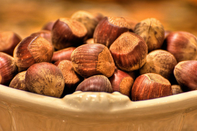 hazelnuts flickr