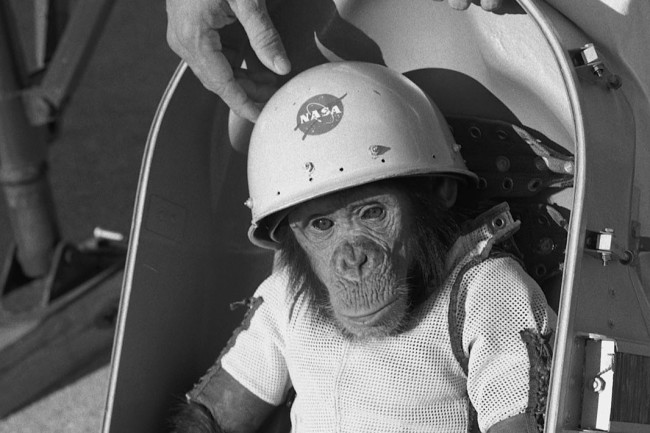 ham the chimp in space suit - NASA