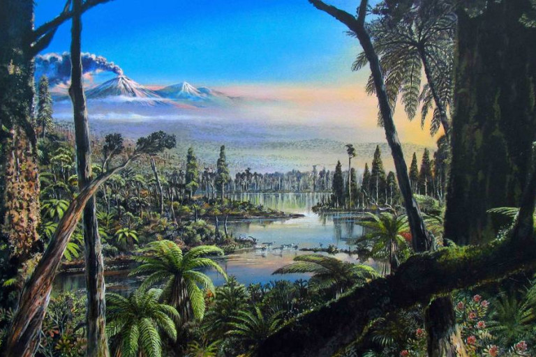 A Rainforest Flourished in Antarctica 90 Million Years Ago, Study Suggests