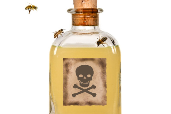 Bee Poison - Shutterstock