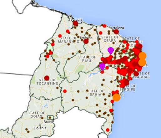 zika-virus-overlay-2.jpg