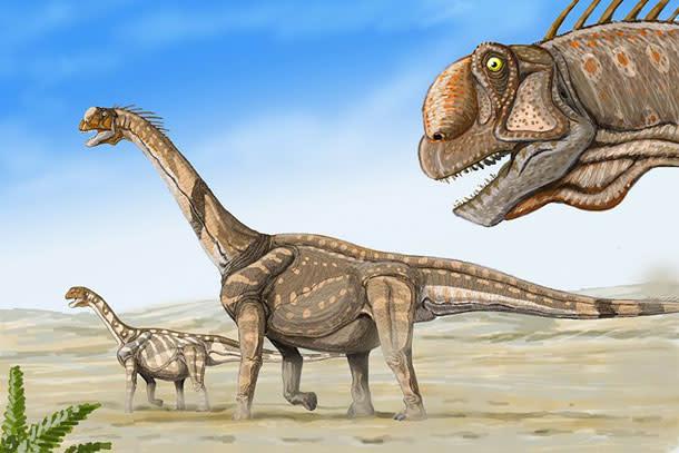 Camarasurus.jpg