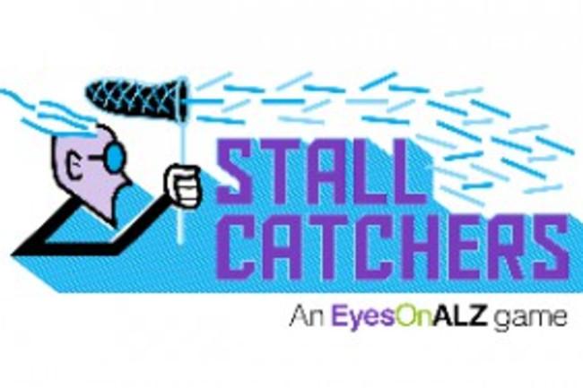 StallCatchers