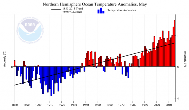 Climate_at_a_Glance__Time_Series___National_Centers_for_Environmental_Information__NCEI_1-1024x601.png