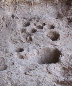 Raqefet Cave rock mortars - Wikimedia Commons