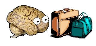 neuroskeptic_brazil.png