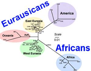 eurasicans.png