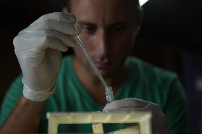 Chris Golden, doing what he does best: collecting virus samples while trying to stay extremely safe. (Credit: NatGeo/Jon Betz)