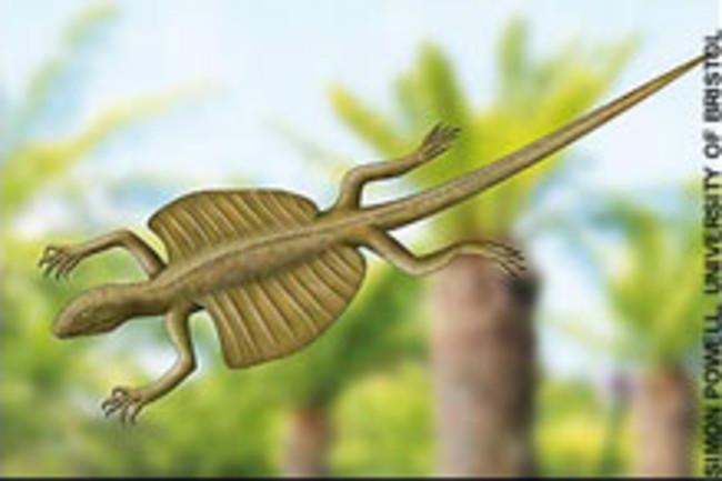 kuehneosaurus.jpg