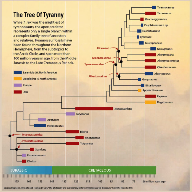 Tyrannosaur Family Tree - Bishop/Discover
