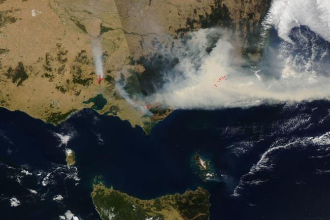 Victoria-bushfires-1024x879.jpeg