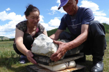 What Mongolia's Dairy Farmers Have to Teach Us About the Hidden History of Microbes