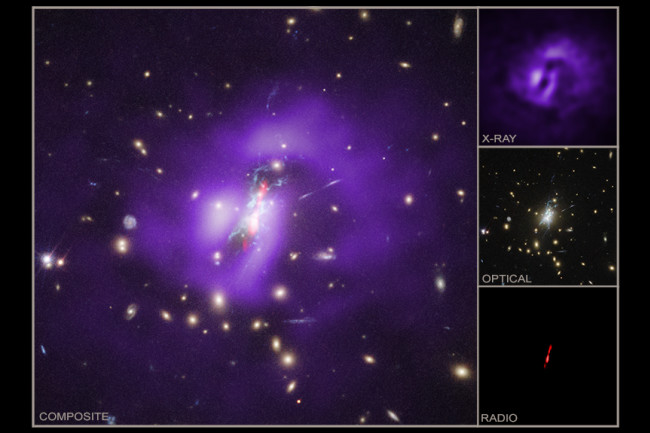 Phoenix Galaxy Cluster Multi-Wavelength