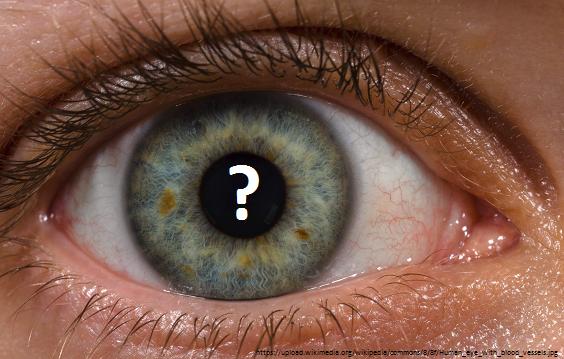 eyeball blindness