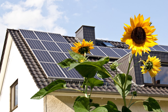 solar panel green energy on a home roof with flowers - shutterstock