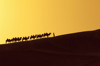 The Silk Road Was More Than a Vast Trade Route