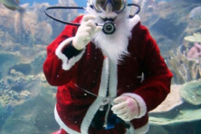 santa-swimming.jpg