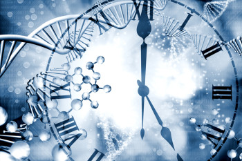 Is Life Expectancy Written in Our DNA?