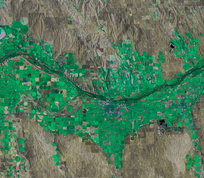 Cottonwood-Forest-Landsat.jpg