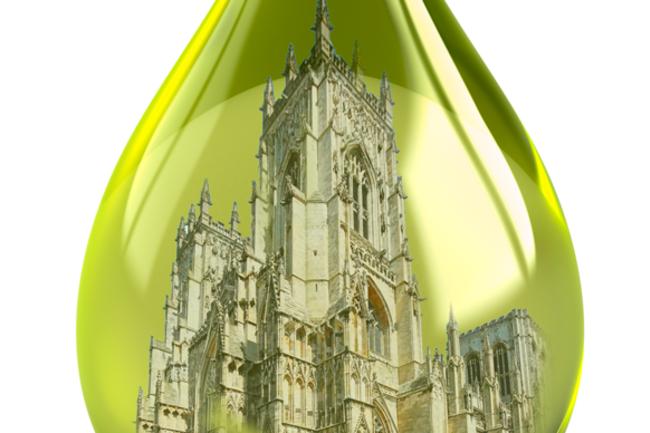 olive-oil-conservation.png