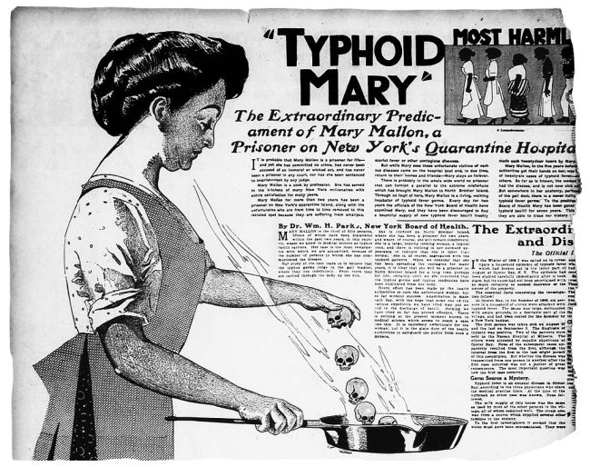 Typhoid Mary Cartoon - Wikimedia Commons